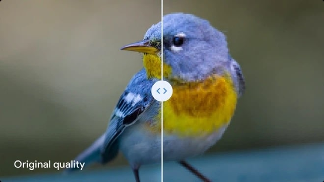 Google dìm hàng thuật toán nén ảnh nổi tiếng của chính mình